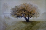 StoreGal/store/Oil/_thb_Tree in fog 36x24.jpg