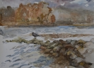 StoreGal/store/Watercolor/_thb_Great blue heron Centennial lake.JPG