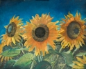 gal/fineart/Still life/_thb_Sunflowers (30x24) (1).jpg